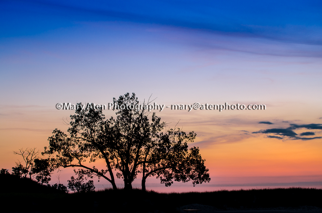 Sunset Photo With Tree Silhouette Mary Aten Photography