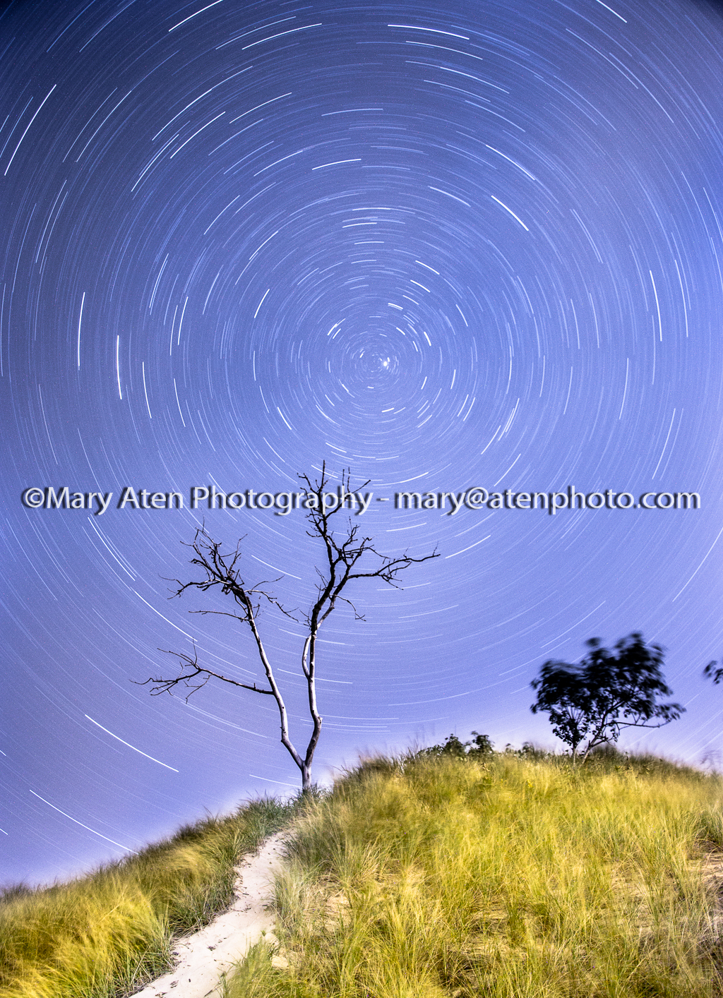 Star Trails And Dune Photo Mary Aten Photography